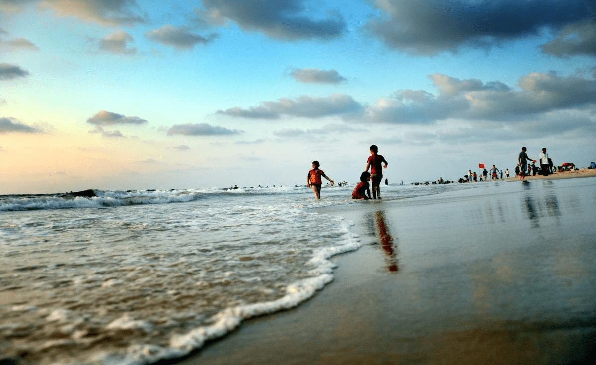 ضيفة غريبة ميتة على شاطئ بحر غزة (صور)