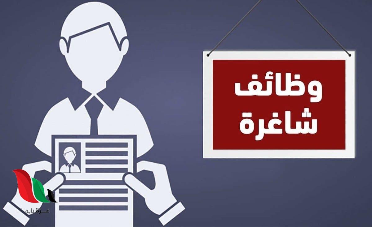غزة: وظائف شاغرة بمجال الدراسة والتسويق