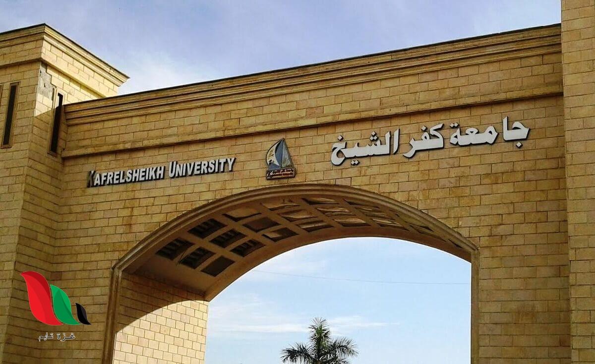 نتائج الطلاب في جامعة كفر الشيخ بالرقم القومي