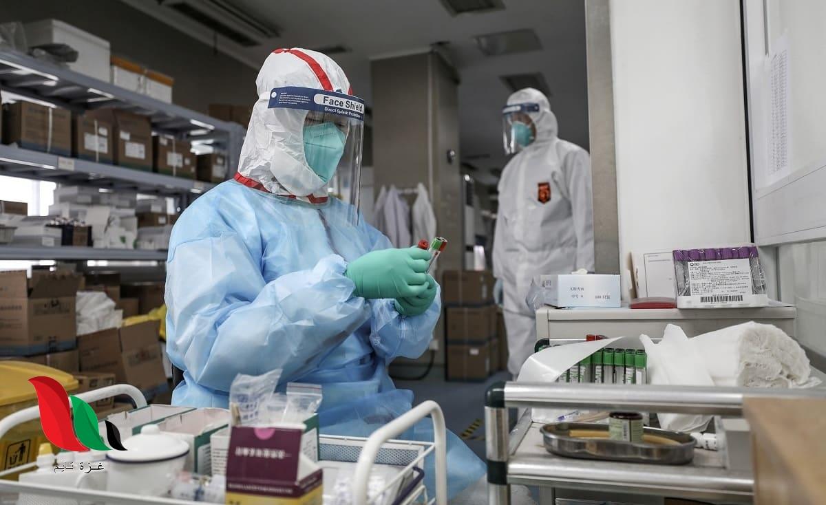 وباء جديد يهدد العالم.. وفاة صيني بسبب فيروس هانتا القاتل فما هي أعراضه