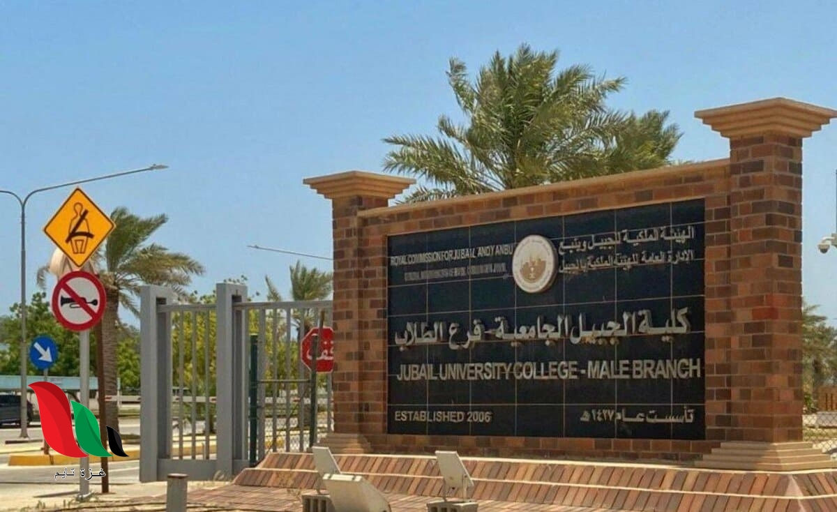نسب قبول التخصصات في كلية الجبيل الجامعية بالمملكة العربية السعودية