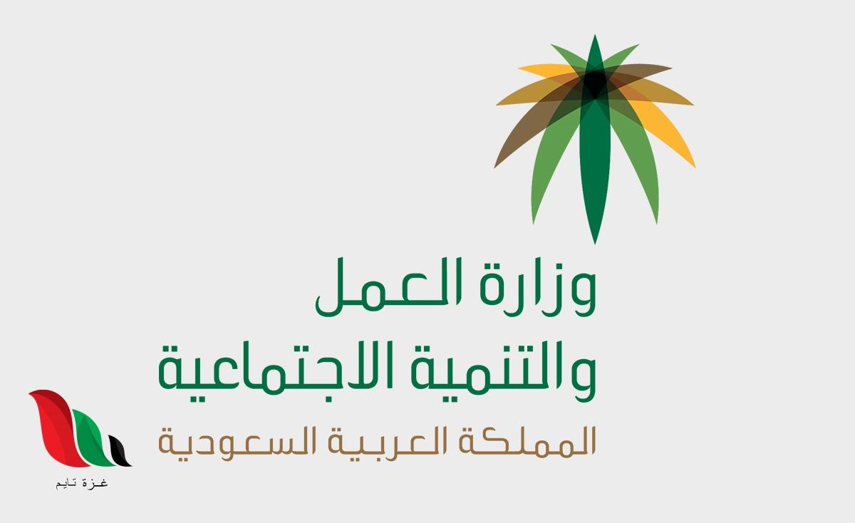 السعودية: طريقة التسجيل في موقع الضمان الاجتماعي عن طريق النت