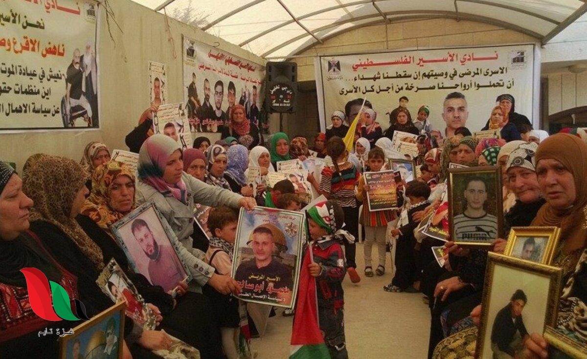 250 أسيرًا فلسطينيًا من غزة في سجون الاحتلال