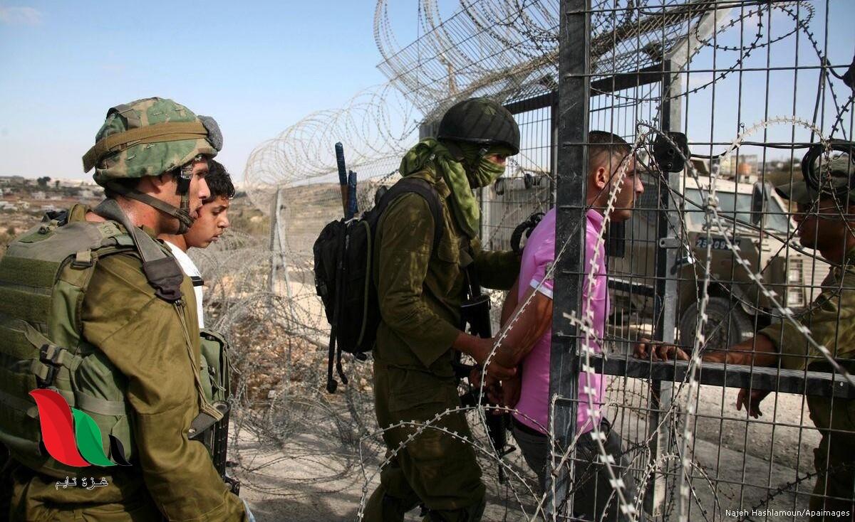 بينهم سيدة مسنة.. الاحتلال يعتقل 76 فلسطينيًا من غزة خلال 2020