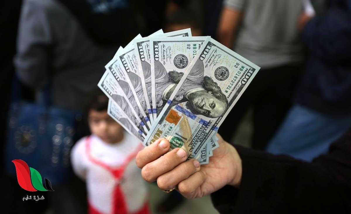 رابط فحص 100 دولار من المنحة القطرية عن شهر 3 في غزة